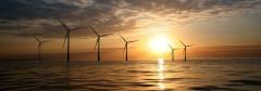 Renewable & Appropriate Energy Laboratory (RAEL)