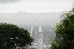 "Kammen: UC Divestment is a ""no-brainer"""