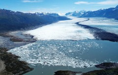 First Direct Observation of Carbon Dioxide's Increasing Greenhouse Effect at the Earth's Surface
