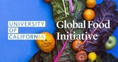 Kripa Akila Jagannathan selected for UC-Sponsored Food Fellowships 2015-2016