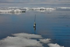 NOAA Was Right, No Pause in Global Warming Says ERG Grad Student Hausfather