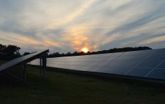 Kammen on Energy in Africa: Why Renewables Will Give More People Access to Energy than Coal