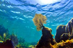 ERG student Hausfather in Science: Oceans are warming even faster than previously thought