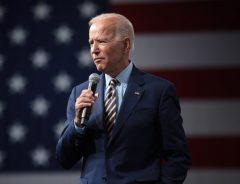 """Kammen Deems Biden's Climate Plans as """"Not Ambitious Enough"""""""