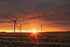 ERG Professor Dan Kammen on the Importance of Political Policies Against Climate Change