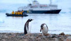 ERG PhD Student Valeri Vasquez Calls to Protect the Antarctic — Before it's Too Late